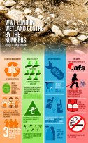 Protecting London Infographic: WWT London Wetland Centre